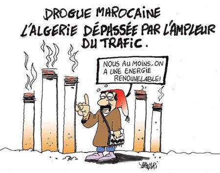 Drogue marocaine: L'Algérie dépassée par l'ampleur du trafic - Dessins et Caricatures, Hawari - La Tribune des Lecteurs - Gagdz.com