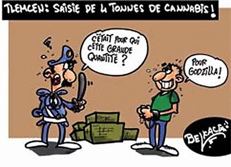 Tlemcen: Saisie de 4 tonnes de cannabis - Belkacem - Le Courrier d'Algérie, Dessins et Caricatures - Gagdz.com