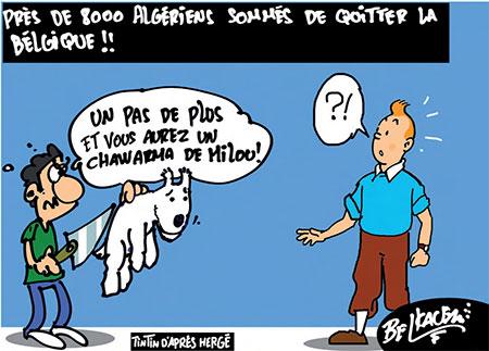 Près de 8000 algériens sommés de quitter la Belgique - Belkacem - Le Courrier d'Algérie, Dessins et Caricatures - Gagdz.com