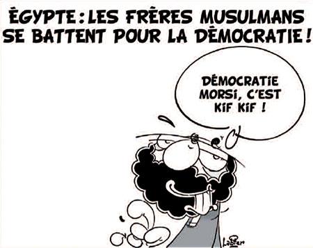 Egypte: Les frères musulmans se battent pour la démocratie - Dessins et Caricatures, Vitamine - Le Soir d'Algérie - Gagdz.com