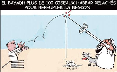 El Bayadh: Plus de 100 oiseaux habbar relachés pour repeupler la region - Dessins et Caricatures, Jony-Mar - La voix de l'Oranie - Gagdz.com