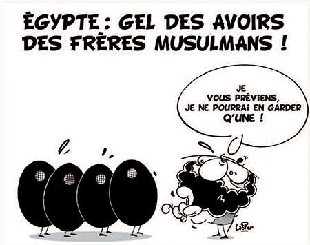 Egypte: Gel des avoirs des frères musulmans - Dessins et Caricatures, Vitamine - Le Soir d'Algérie - Gagdz.com