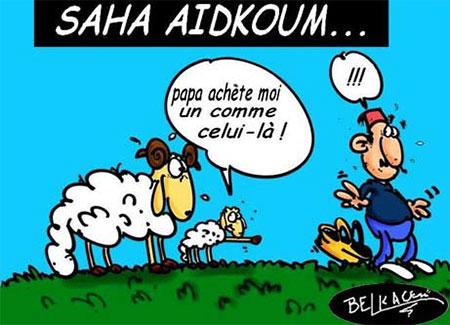 Saha Aidkoum - Belkacem - Le Courrier d'Algérie, Dessins et Caricatures - Gagdz.com