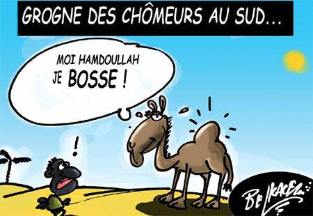 Grogne des chômeurs au sud - Belkacem - Le Courrier d'Algérie, Dessins et Caricatures - Gagdz.com