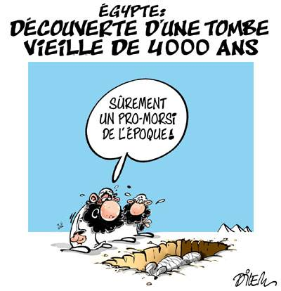 Égypte : Découverte d'une tombe vieille de 4000 ans - Dessins et Caricatures, Dilem - TV5 - Gagdz.com