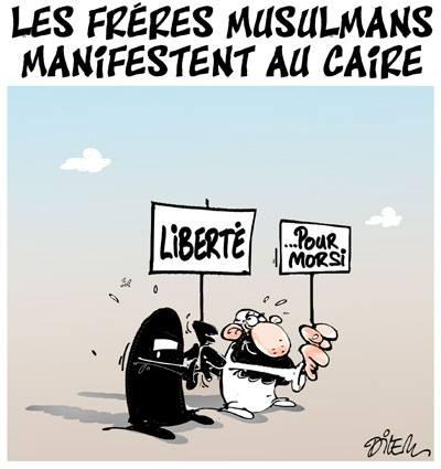 Les frères musulmans manifestent au Caire - Dessins et Caricatures, Dilem - TV5 - Gagdz.com
