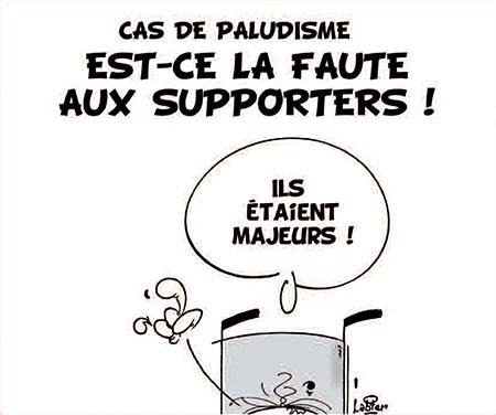 Cas de paludisme: Est-ce la faute aux supporters ! - supporters - Gagdz.com