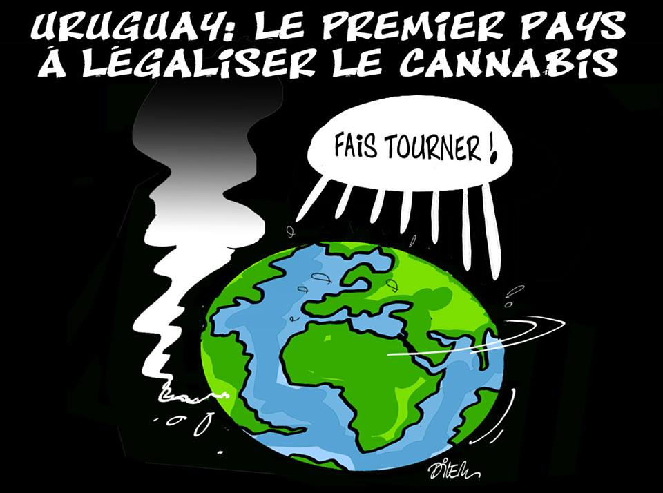 Uruguay : Le premier pays à légaliser le cannabis - Dilem - TV5 - Gagdz.com