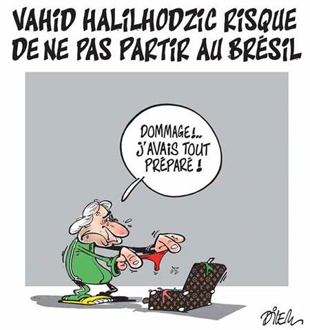 Vahid Halilhodzic risque de ne pas partir au Brésil - risque - Gagdz.com
