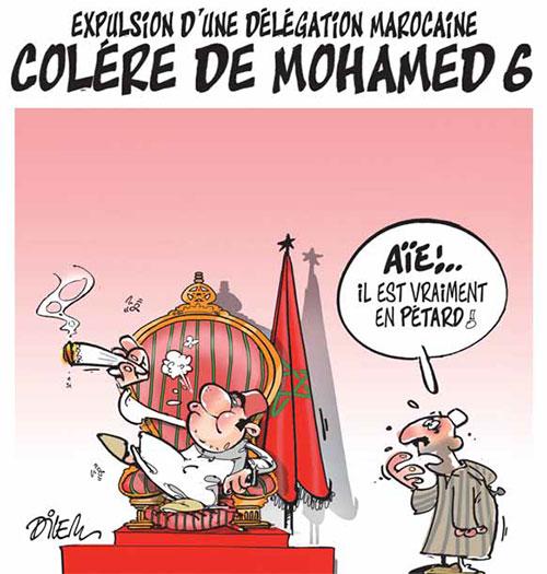 Expulsion d'une délégation marocaine: Colère de Mohamed 6 - Dilem - Liberté - Gagdz.com