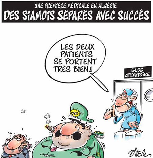 Une première médicale en Algérie: Des siamois séparés avec succès - Dilem - Liberté - Gagdz.com
