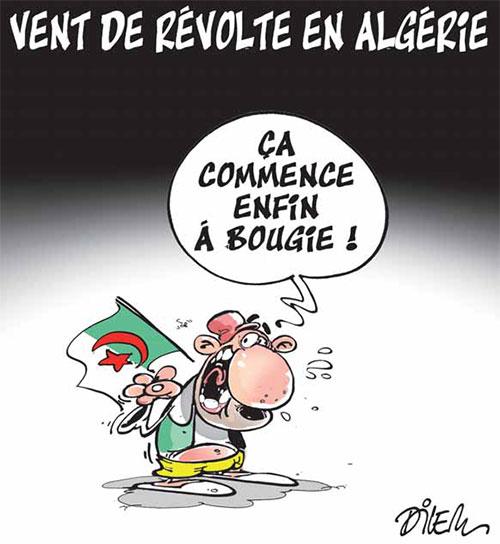 Vent de révolte en Algérie - Dilem - Liberté - Gagdz.com