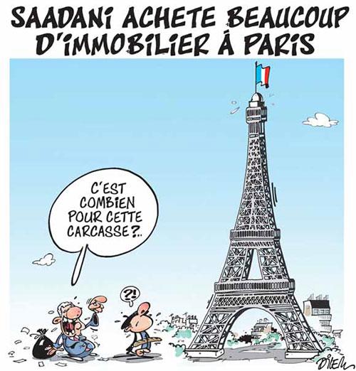 Saadani achète beacoup d'immobilier à Paris - Dilem - Liberté - Gagdz.com