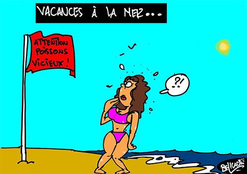 Vacances à la mer - Belkacem - Le Courrier d'Algérie - Gagdz.com