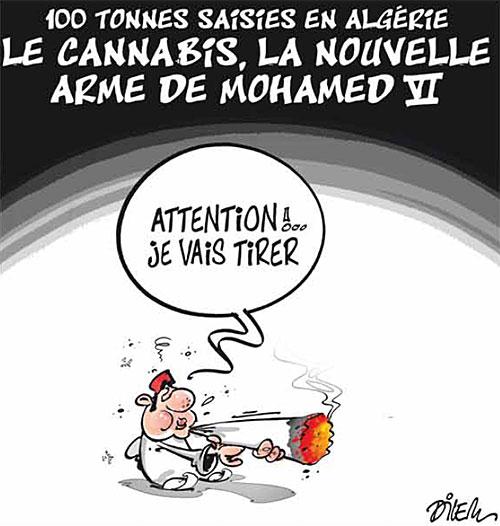 100 tonnes saisies en Algérie: Le cannabis, la nouvelle arme de Mohamed VI - Dilem - Liberté - Gagdz.com