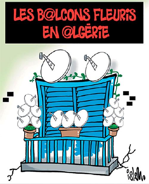 Les balcons fleuris en Algérie - Islem - Le Temps d'Algérie - Gagdz.com