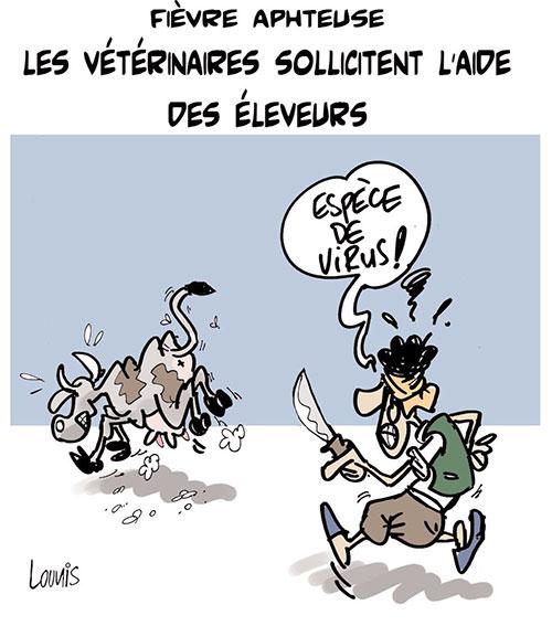 Fièvre aphteuse: Les vétérinaires sollicitent l'aide des éleveurs - Lounis Le jour d'Algérie - Gagdz.com