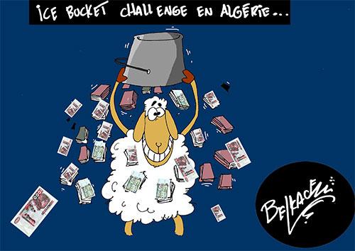Ince bucket challenge en Algérie - Belkacem - Le Courrier d'Algérie - Gagdz.com