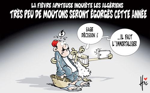La fièvre aphteuse inquiète les algériens: Très peu de moutons seront égorgés cette année - Le Hic - El Watan - Gagdz.com