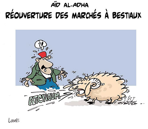 Aïd al adha: Réouverture des marchés à bestiaux - Lounis Le jour d'Algérie - Gagdz.com