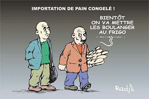 Inportation de pain congelé - pain - Gagdz.com