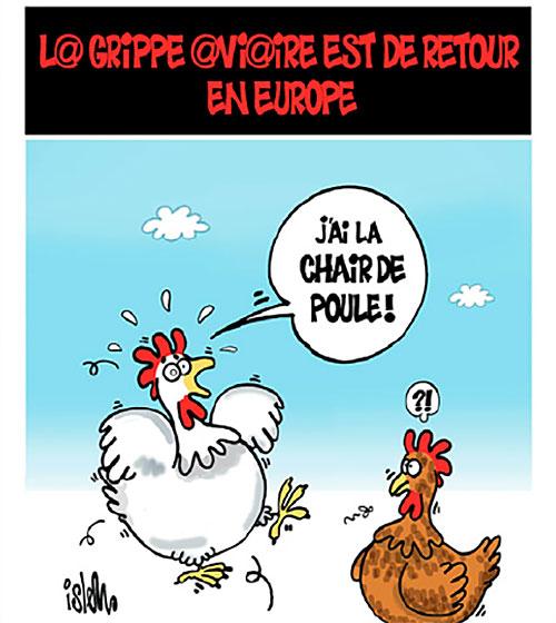 La grippe aviaire est de retour en Europe - Islem - Le Temps d'Algérie - Gagdz.com