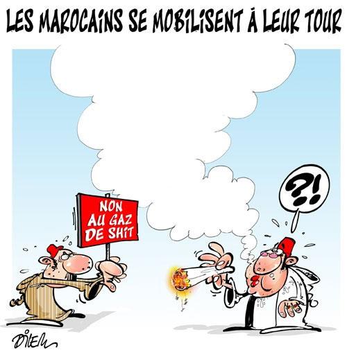 Les Marocains se mobilisent à leur tour - Dilem - Liberté - Gagdz.com