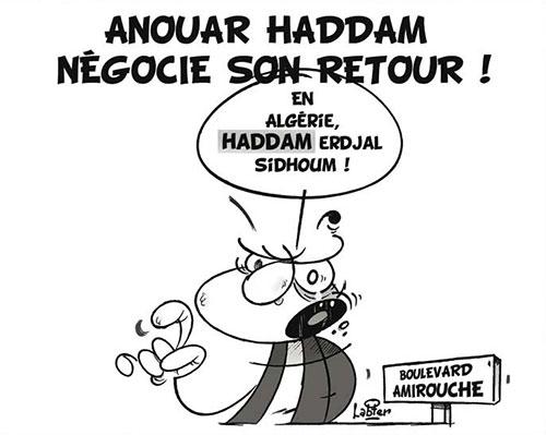 Anouar Haddam négocie son retour - Vitamine - Le Soir d'Algérie - Gagdz.com