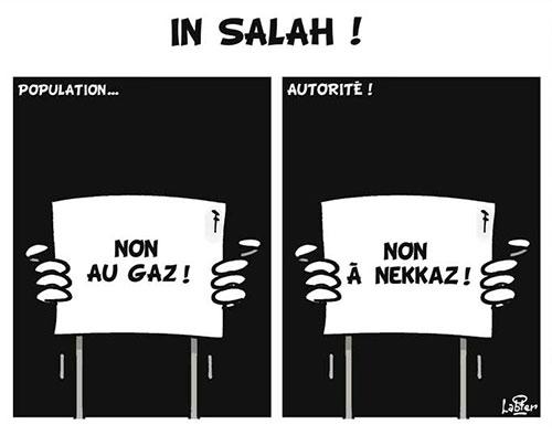 In Salah - Vitamine - Le Soir d'Algérie - Gagdz.com