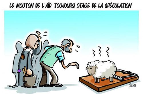 Le mouton de l'aïd toujours otage de la spéculation - Sidou - Gagdz.com
