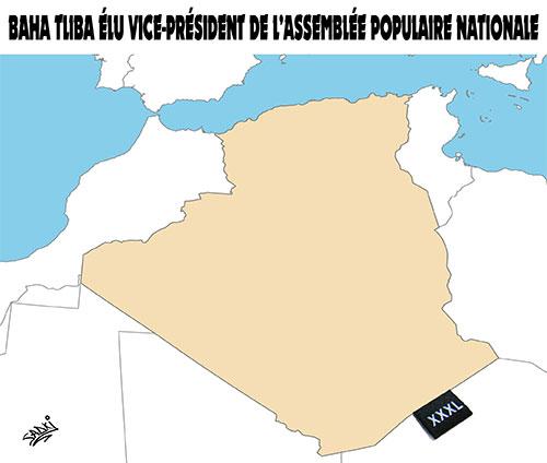 Baha Tliba élu vice-président de l'assemblée populaire nationale - Sadki - Le provincial - Gagdz.com
