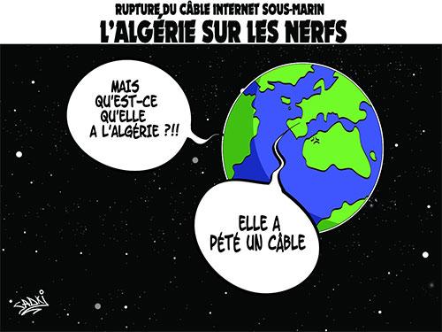 Rupture du câble internet sous-marin: L'Algérie sur les nerfs - Algérie télécom - Gagdz.com