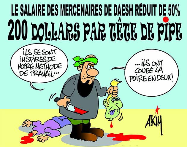 Le salaire des mercenaires de daesh réduit de 50%