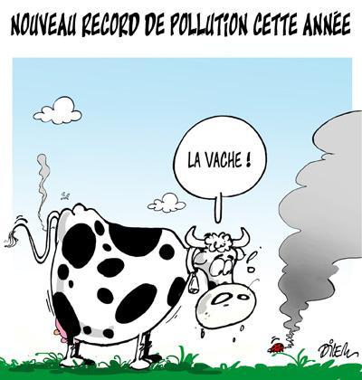 Caricature dilem TV5 du Mardi 10 novembre 2015