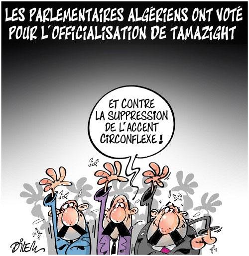 Les parlementaires algériens ont voté pour l'officialisation de tamazight