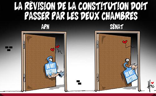 La révision de la constitution doit passer par les deux chambres