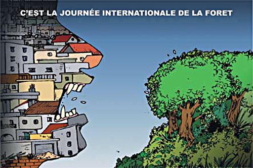 C'est la journée internationale de la forêt