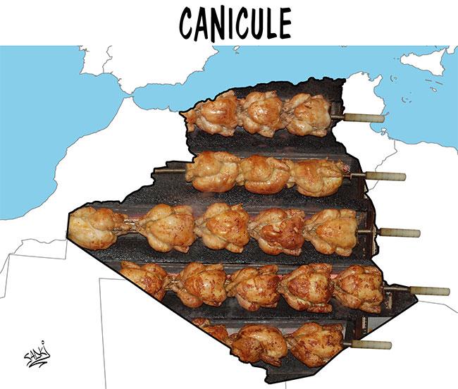 Canicule