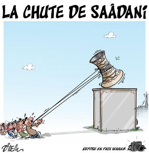 La chute de Saâdani