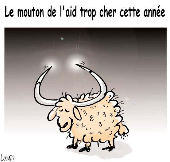 Le mouton de l'aid trop cher cette année