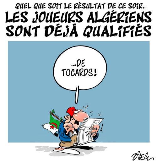Quel que soit le résultat de ce soir: Les joueurs algériens sont déjà qualifiés