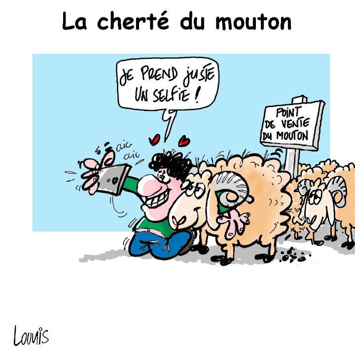 La cherté du mouton
