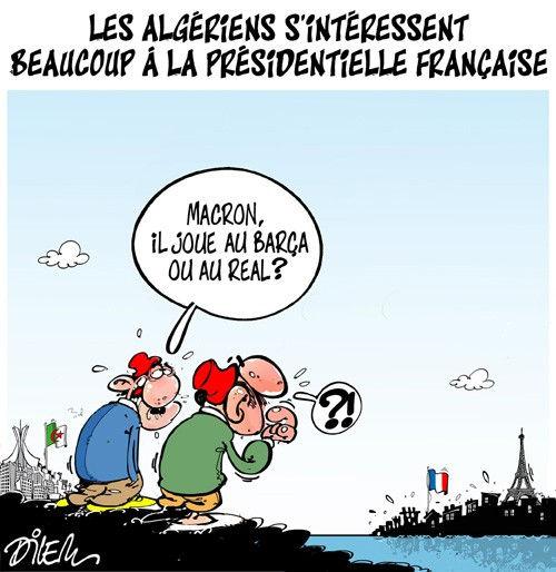 Les Algériens s'intéressent beaucoup à la présidentielle française