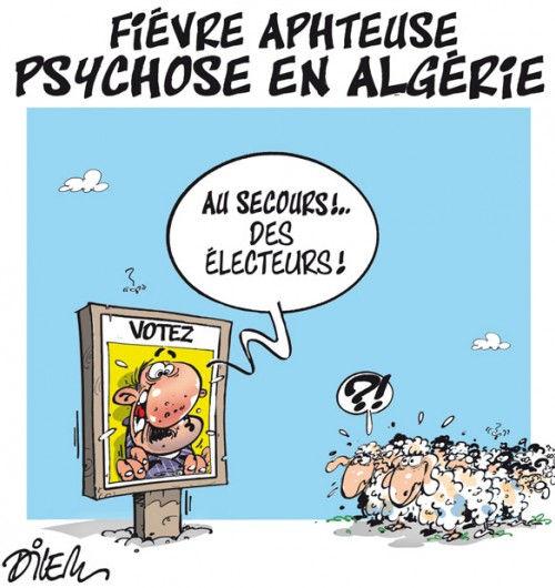 Fièvre aphteuse: Psychose en Algérie