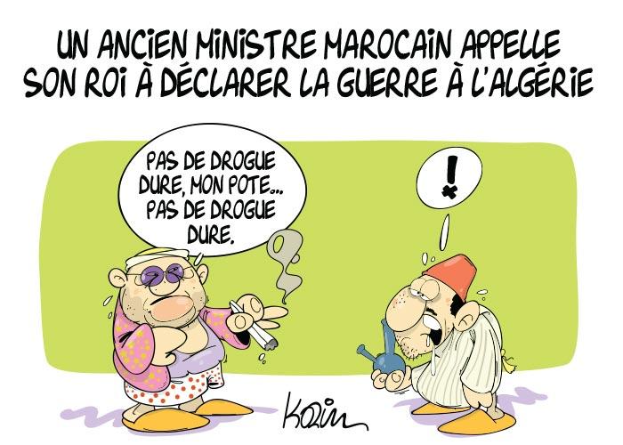 Un ancien ministre marocain appelle son roi à déclarer la guerre à l'Algérie