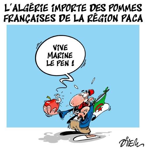 L'Algérie importe des pommes françaises de la région Paca