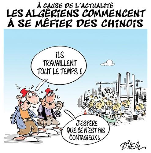 A cause de l'actuatlité les algériens commencent à se méfier des chinois - Chine - Gagdz.com