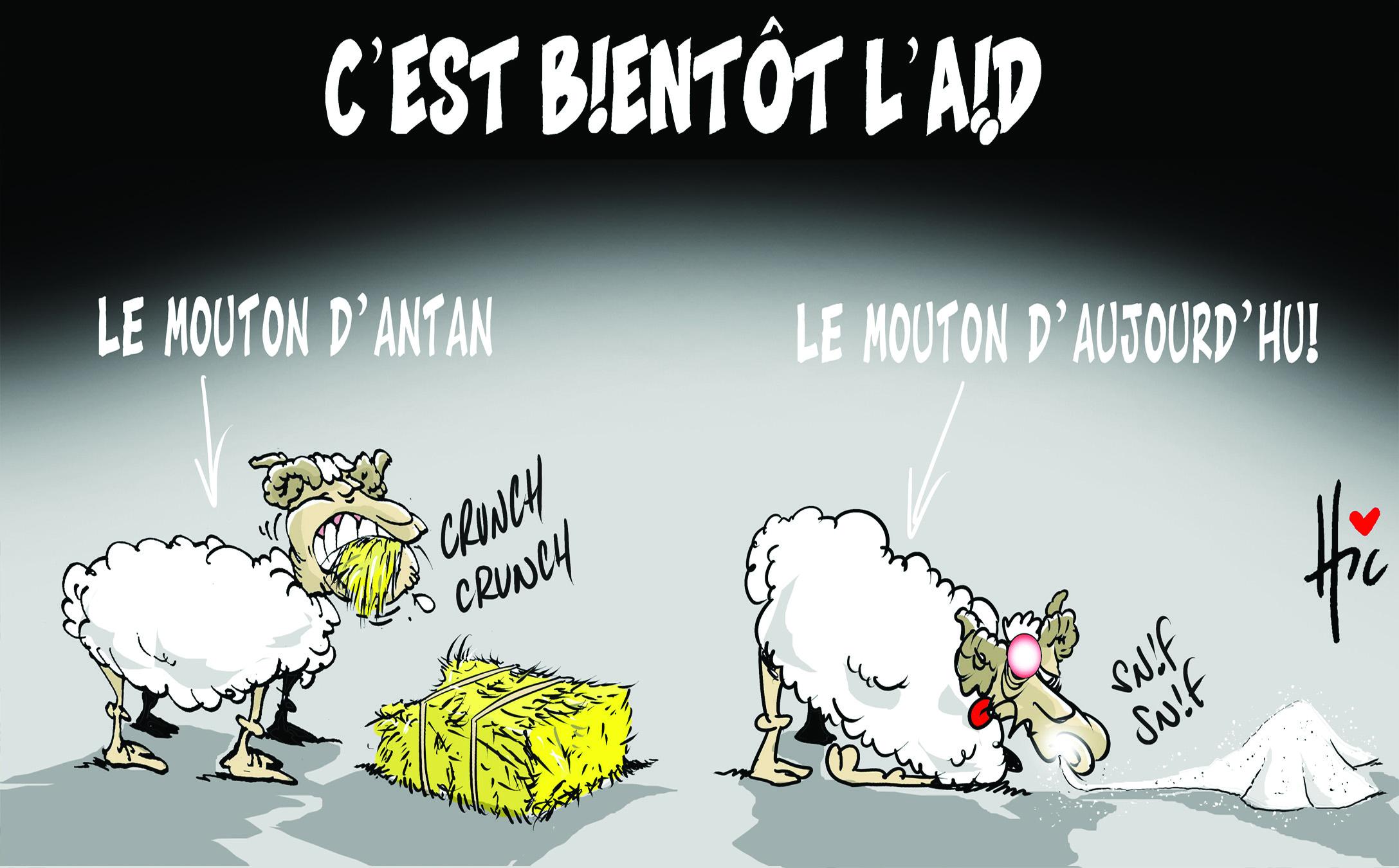 C'est bientôt l'aïd : Le mouton d'antan et mouton d'aujourd'hui - Dessins et Caricatures, Le Hic - El Watan - Gagdz.com