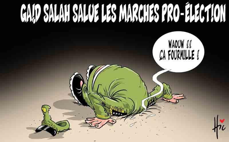 Gaïd Salah salue les marches pro-élections - Dessins et Caricatures, Le Hic - El Watan - Gagdz.com