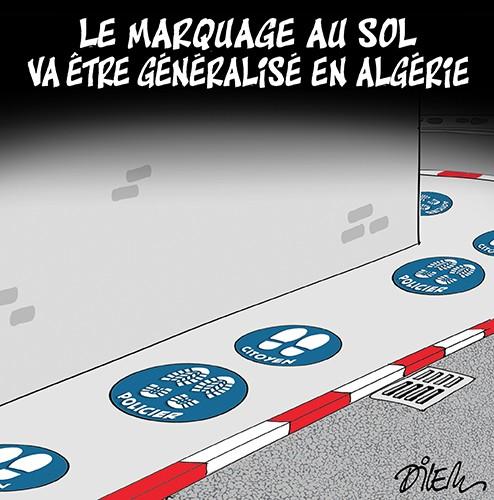 Le marquage au sol va être généralisé en Algérie - police - Gagdz.com